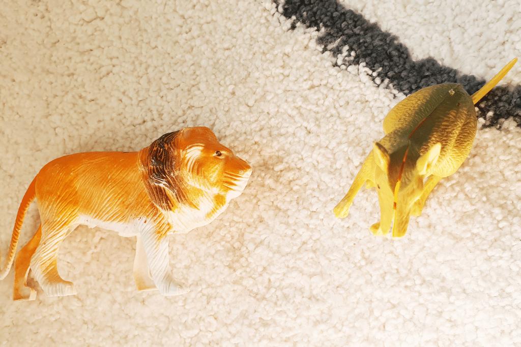 חיות שבורות מפלסטיק